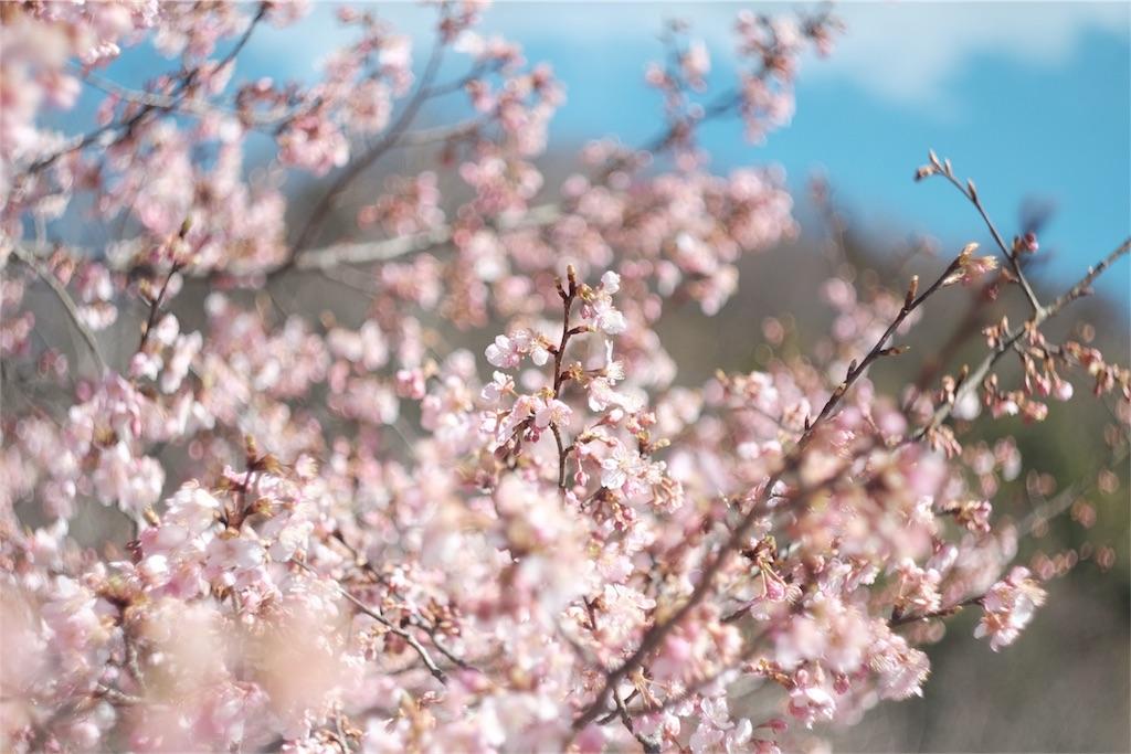 f:id:shioyan3:20170219021825j:image