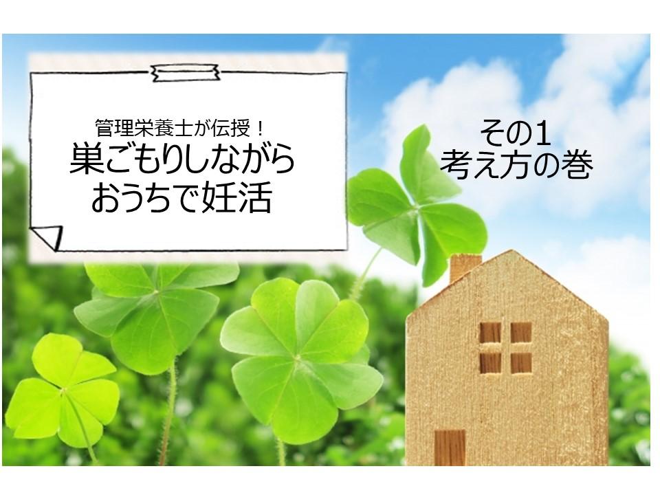 f:id:shiradaruma:20200521152822j:plain