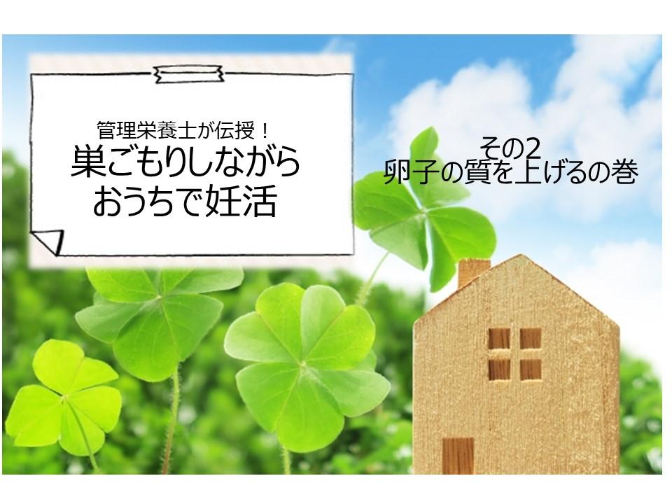 f:id:shiradaruma:20200521153006j:plain