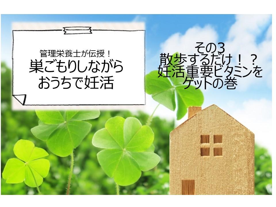 f:id:shiradaruma:20200521153126j:plain