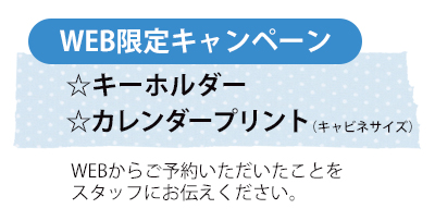 f:id:shirafujisyashin:20170227143358j:plain