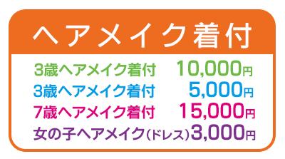 f:id:shirafujisyashin:20170607133218j:plain