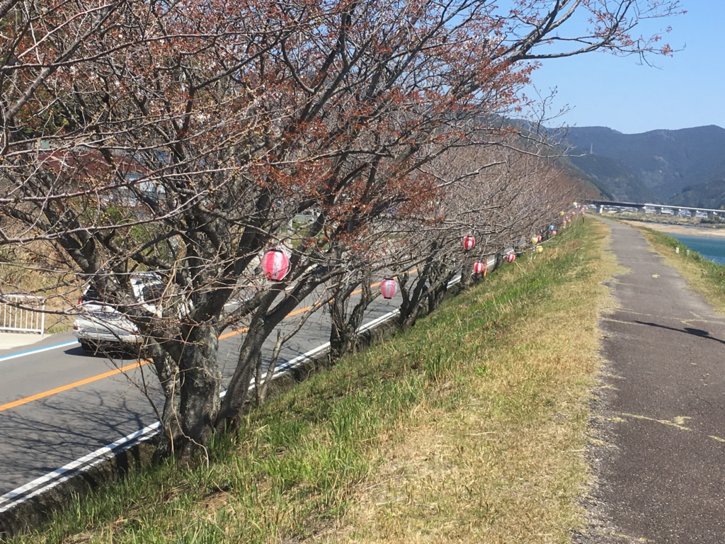 f:id:shirahamaokoshi:20170404095937j:plain