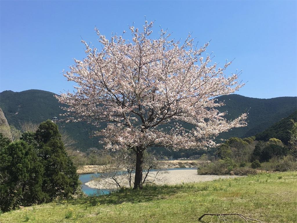 f:id:shirahamaokoshi:20170414114600j:image
