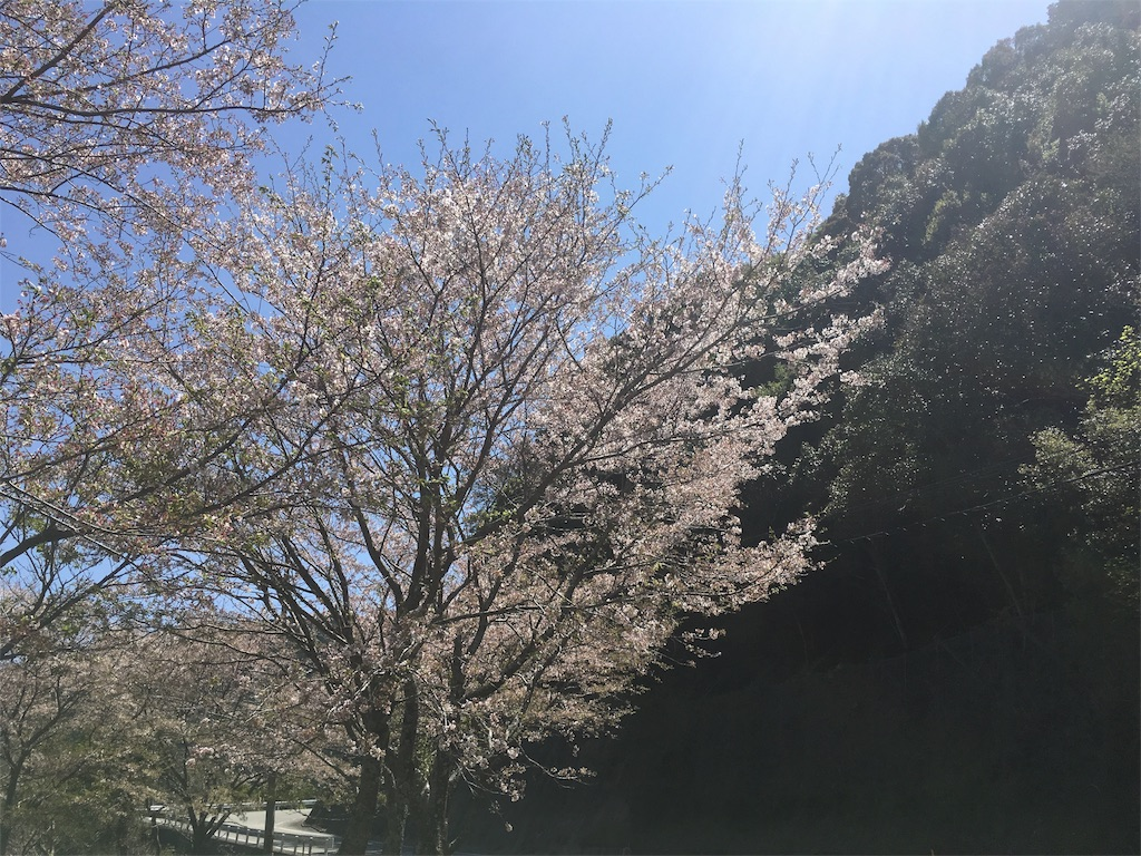 f:id:shirahamaokoshi:20170414114636j:image