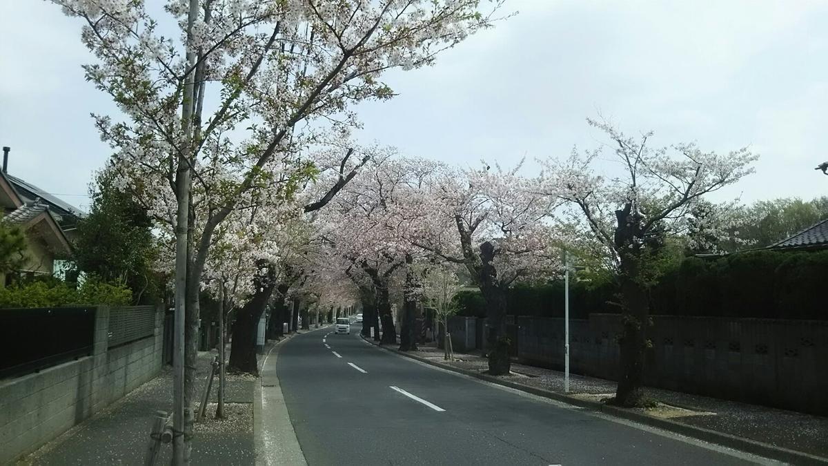 f:id:shiraike:20210401171523j:plain