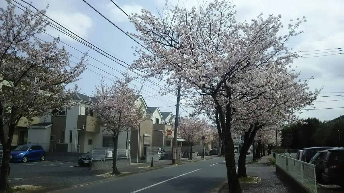 f:id:shiraike:20210401171640j:plain