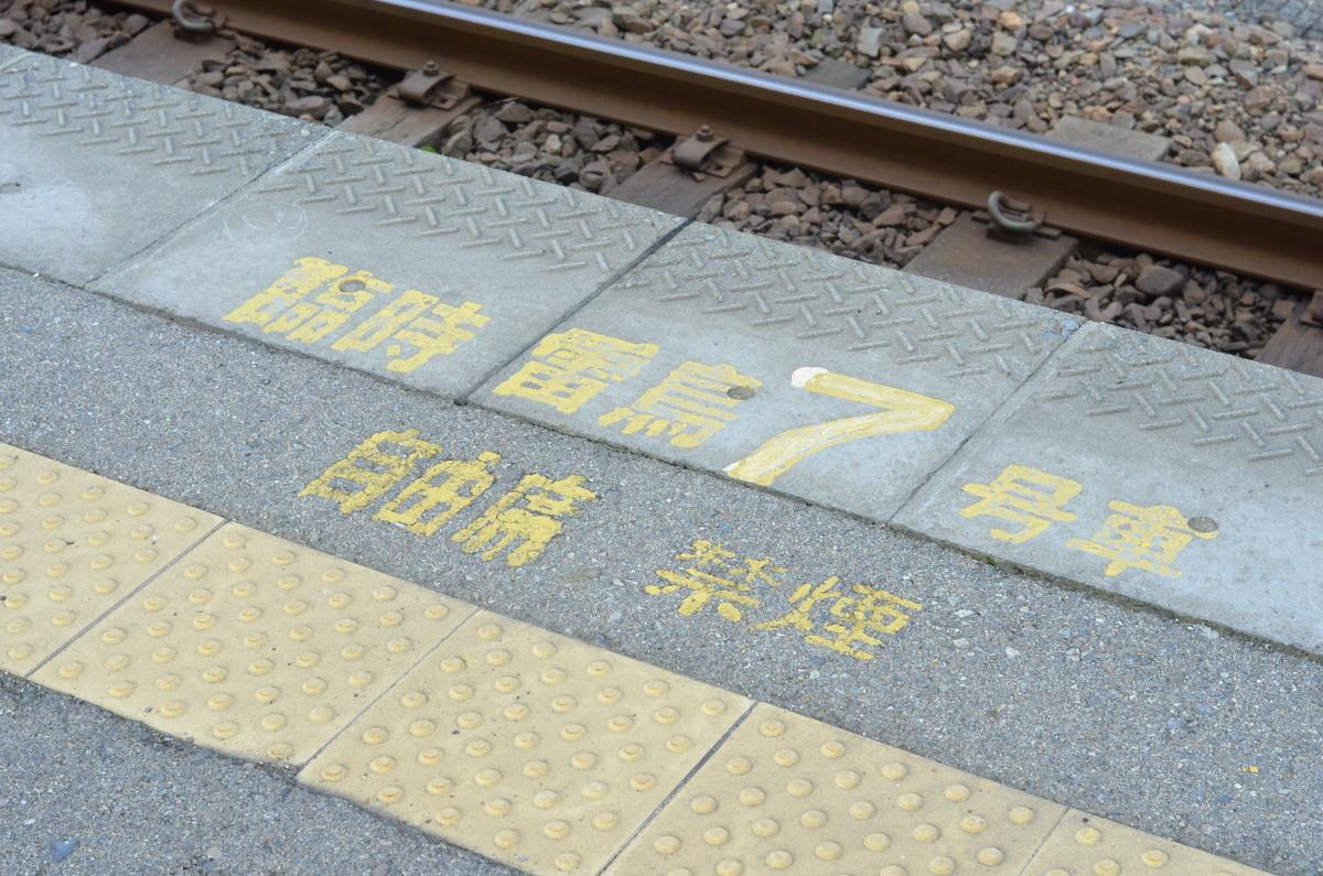 f:id:shirakinozomi:20210206143820j:plain