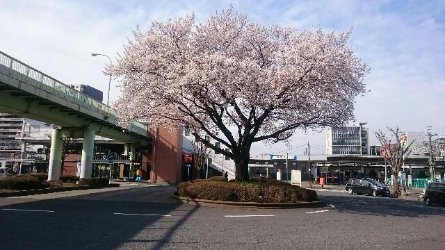 f:id:shirako-ai:20180326192425j:image