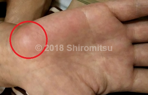 f:id:shiramitsu:20180524013748p:plain