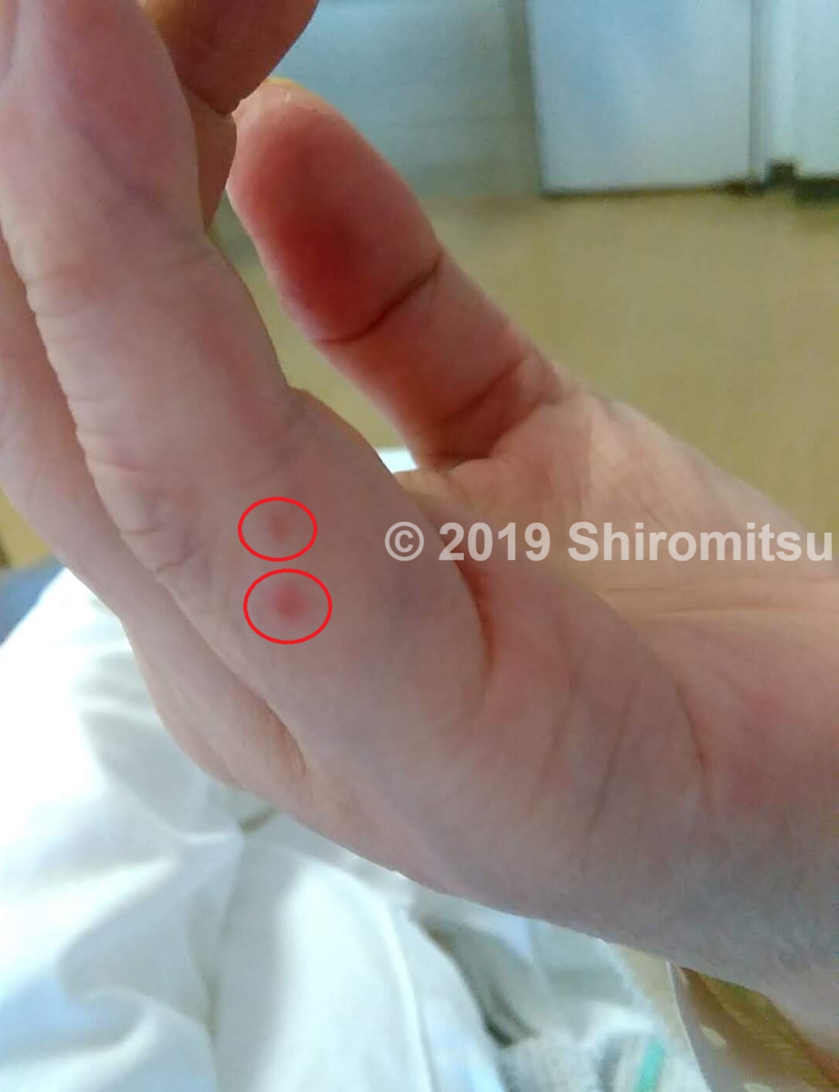 f:id:shiramitsu:20190617004150p:plain