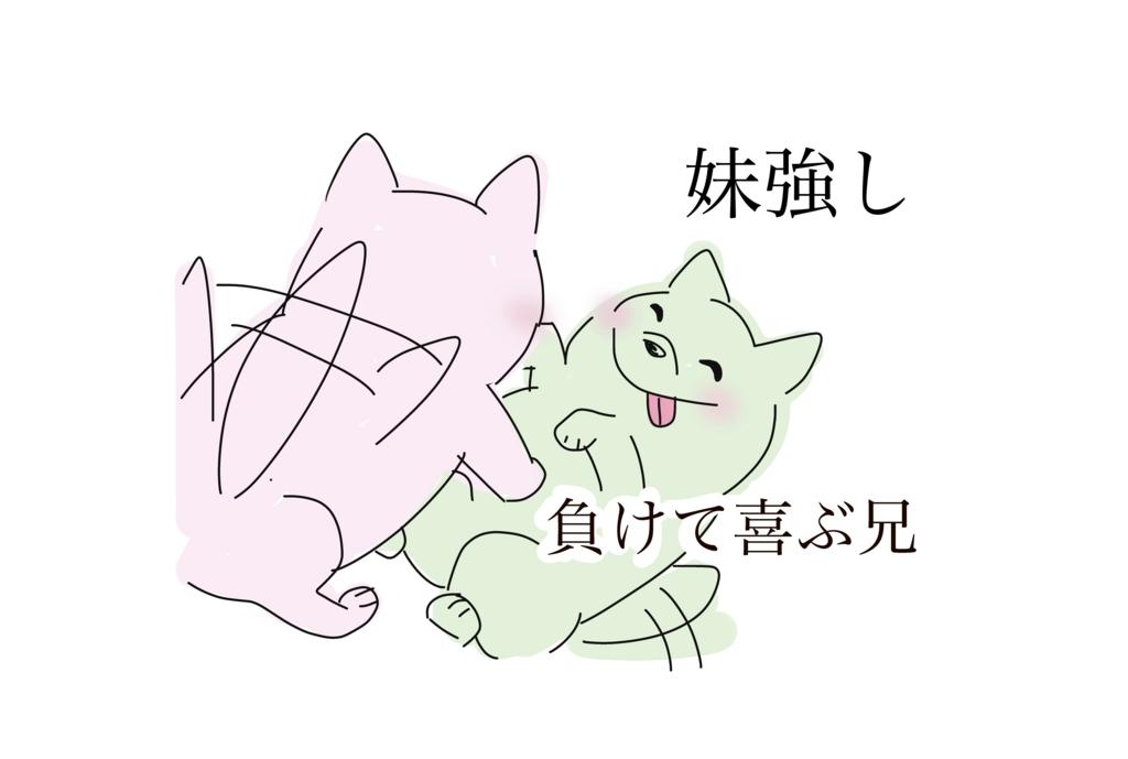 f:id:shiratama-anko:20180318182032j:plain