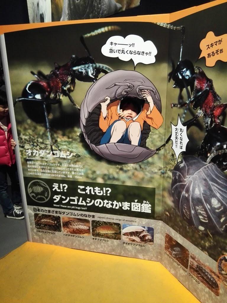 f:id:shiratama-anko:20180325103952j:plain
