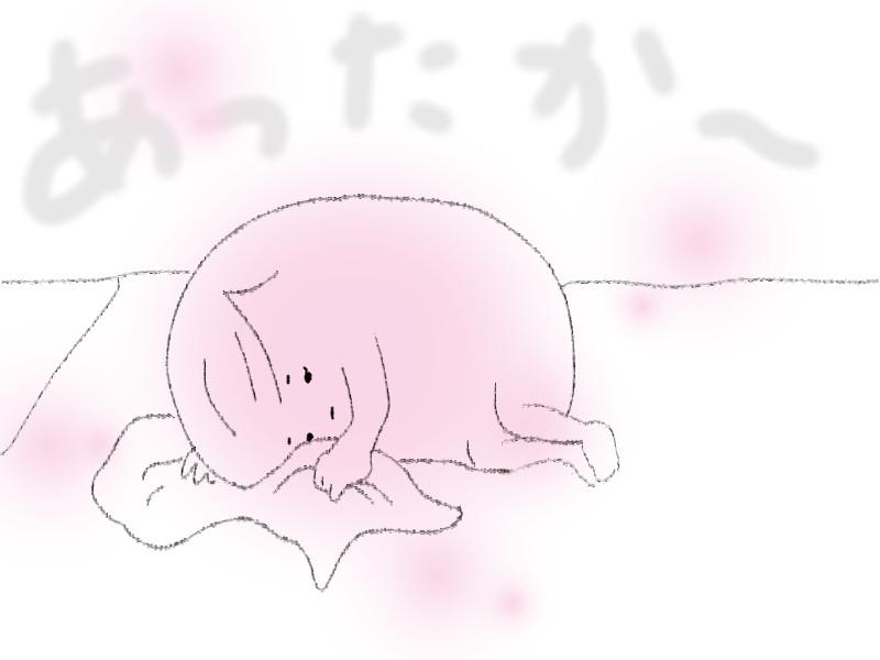 f:id:shiratama-anko:20180422121347j:plain