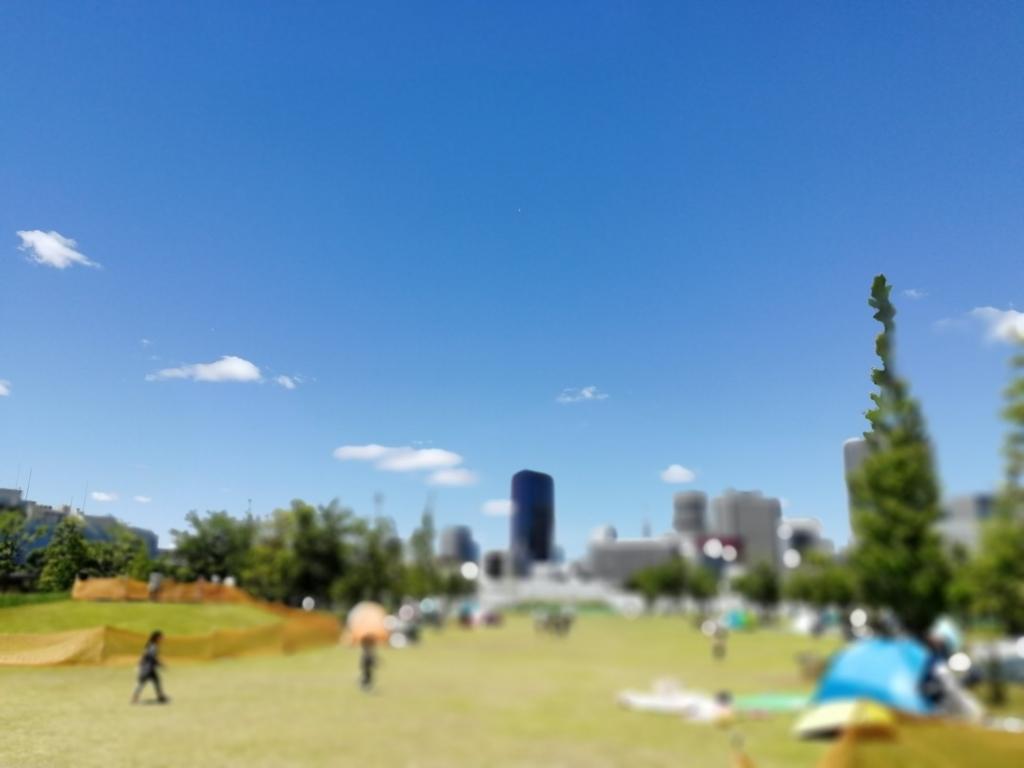 f:id:shiratama-anko:20180521103343j:plain