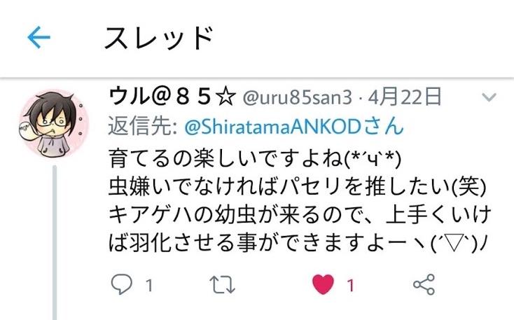 f:id:shiratama-anko:20190522231510j:plain