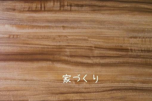 f:id:shiratama-anko:20190524230124j:plain