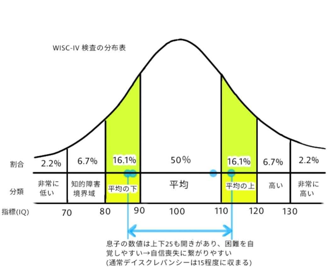 WISC-VI 息子の分布は上下25