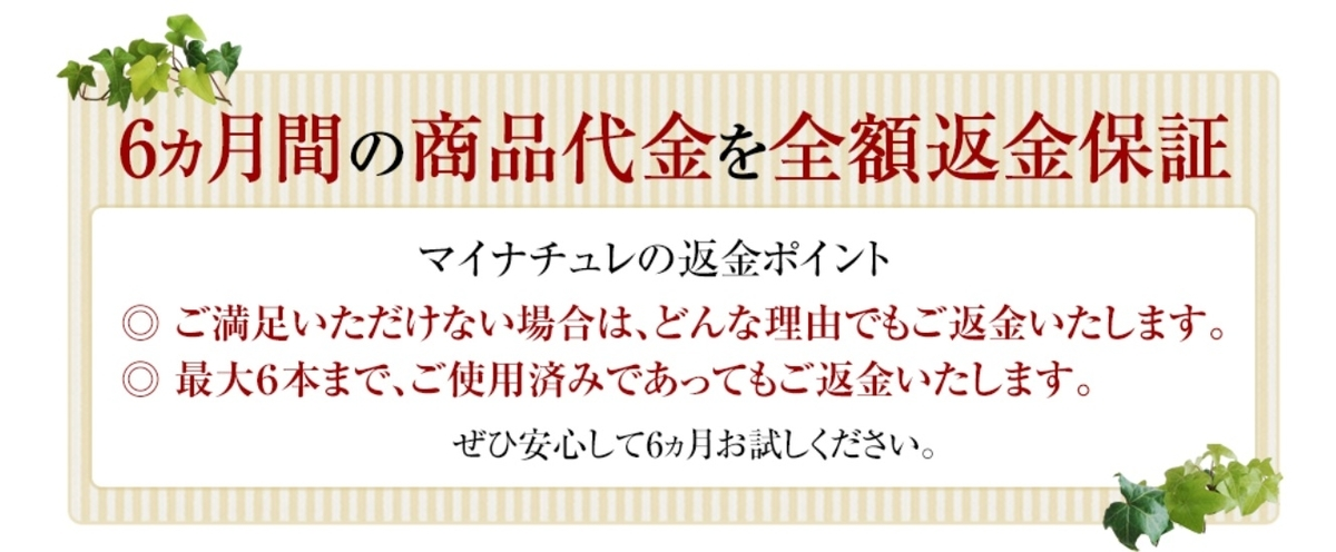 f:id:shiratamachang:20190718104059j:plain