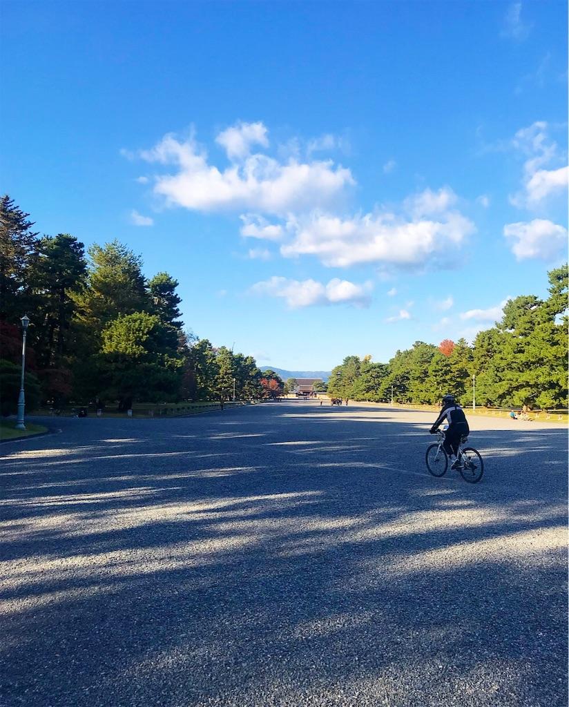 f:id:shiratori_ke:20191121160745j:image