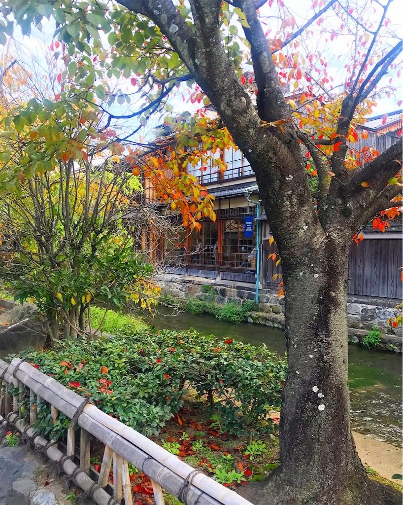 f:id:shiratori_ke:20191121202923j:image