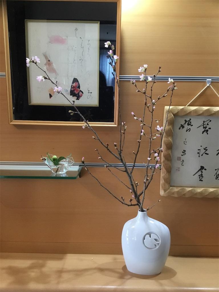 f:id:shiratorimatsumoto:20190121141035j:image
