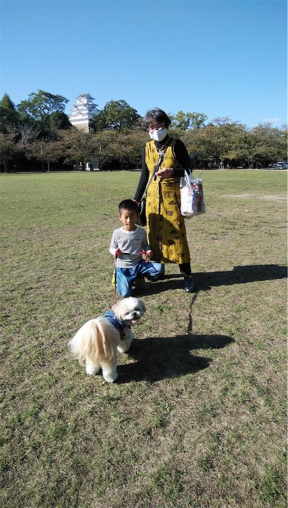 f:id:shiratorimatsumoto:20201018144340j:image