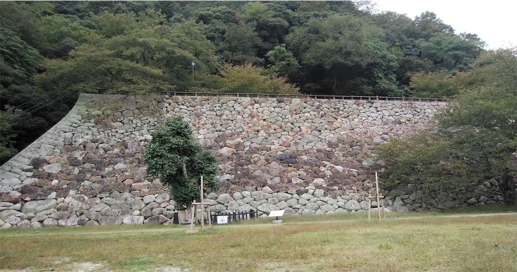 f:id:shiratorimatsumoto:20201019165349j:image