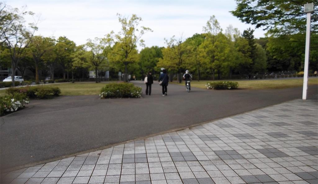 f:id:shiratorimatsumoto:20210417171545j:image