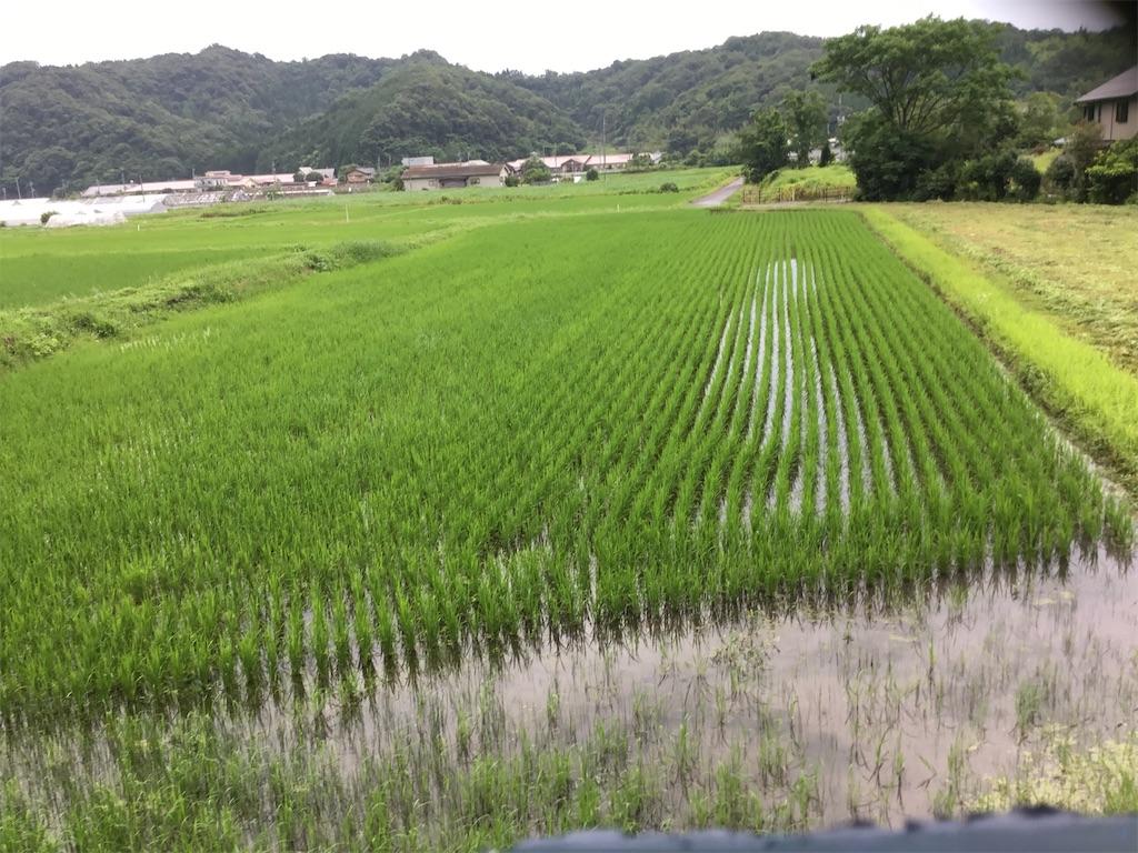 f:id:shiratorimatsumoto:20210704065921j:image