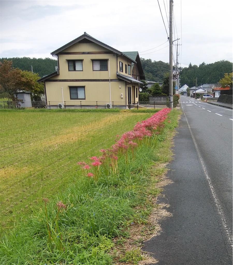 f:id:shiratorimatsumoto:20210923134146j:image