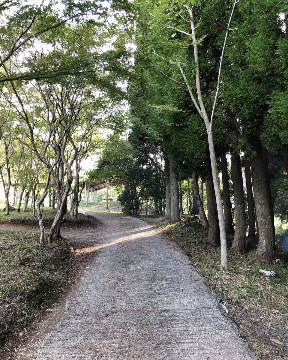 f:id:shiratsume:20191007154915j:plain