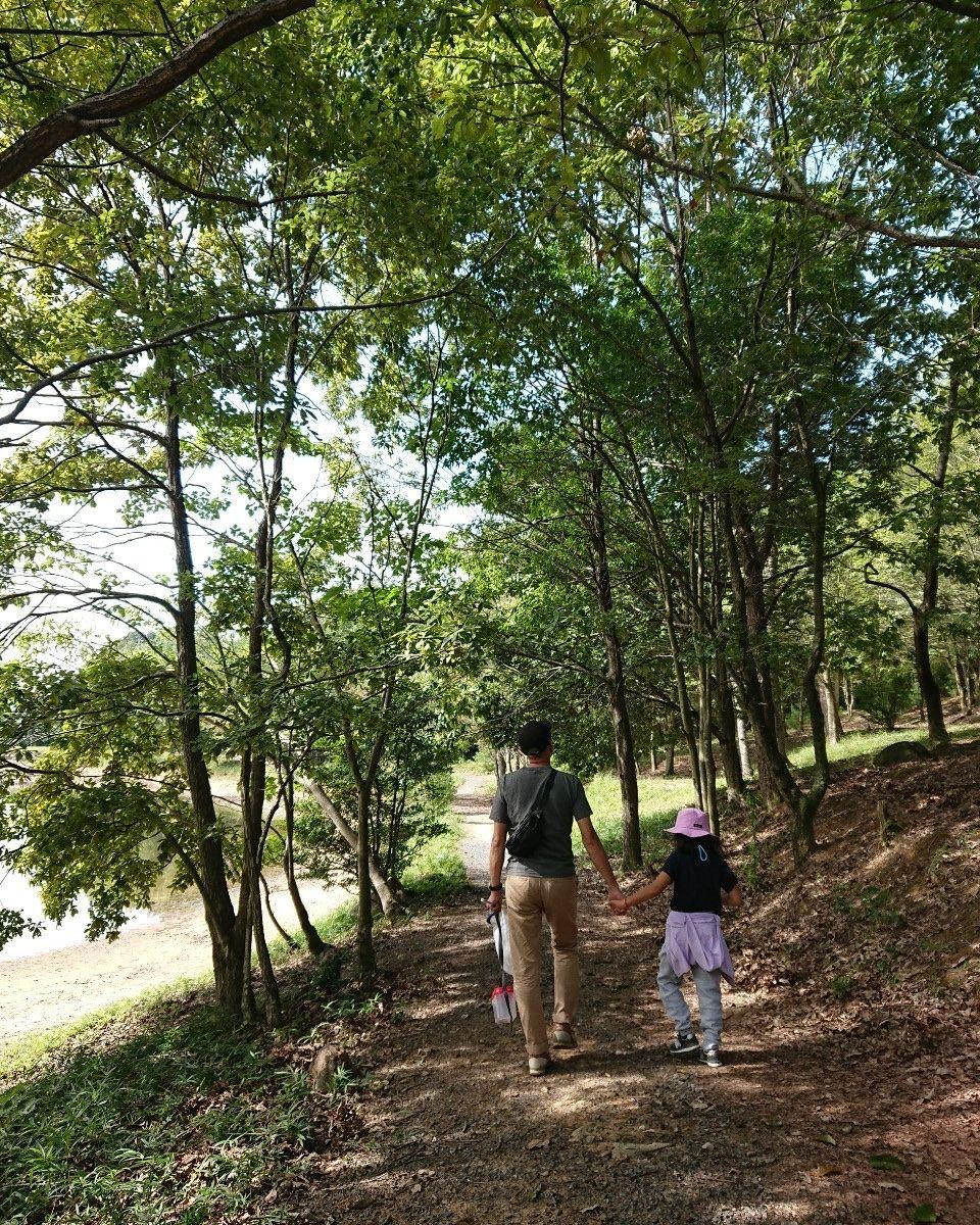 f:id:shiratsume:20200929210752j:plain