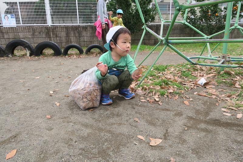 f:id:shirayuri-blog:20181205103158j:image