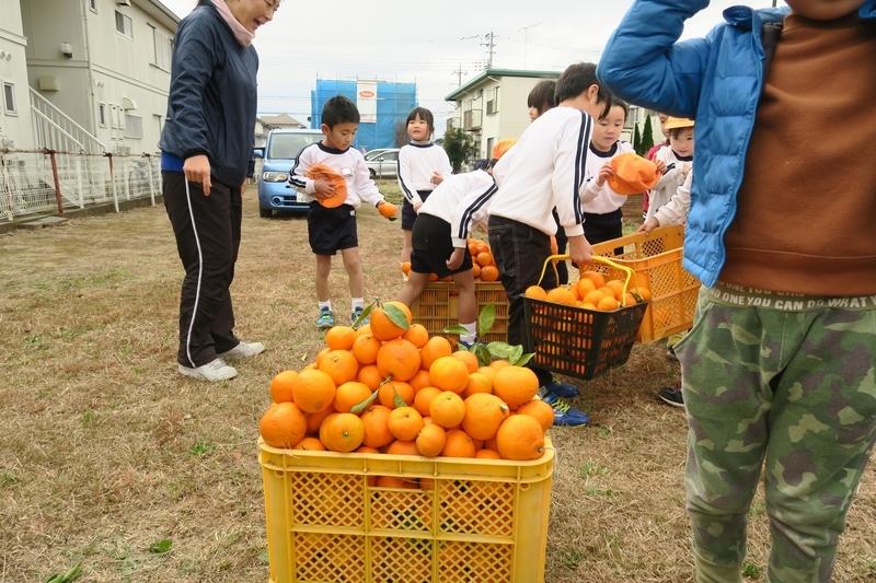 f:id:shirayuri-blog:20181213115351j:image