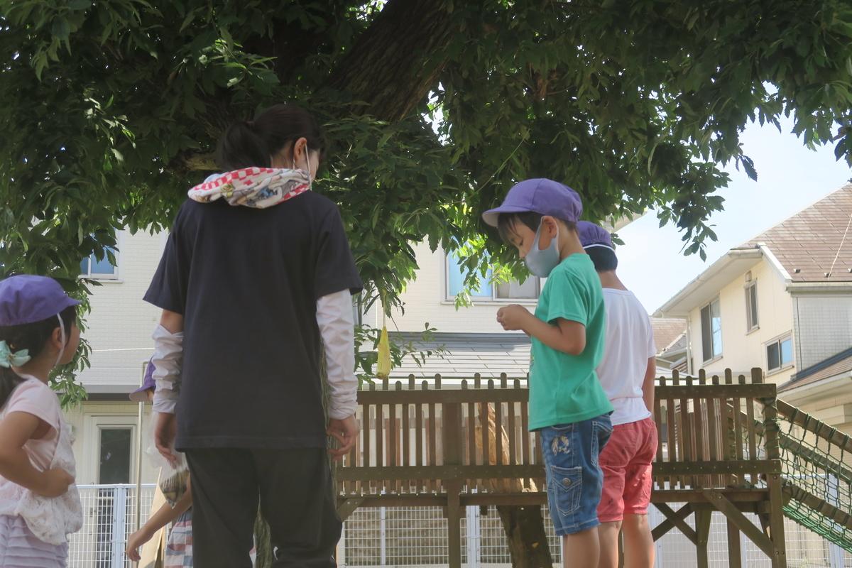 f:id:shirayuri-blog:20210720150802j:plain