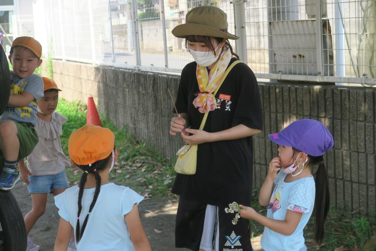f:id:shirayuri-blog:20210720151015j:plain