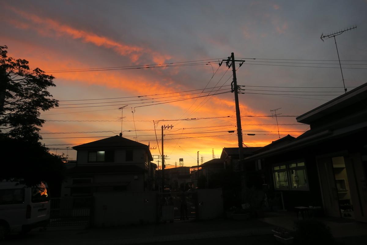 f:id:shirayuri-blog:20210720192039j:plain