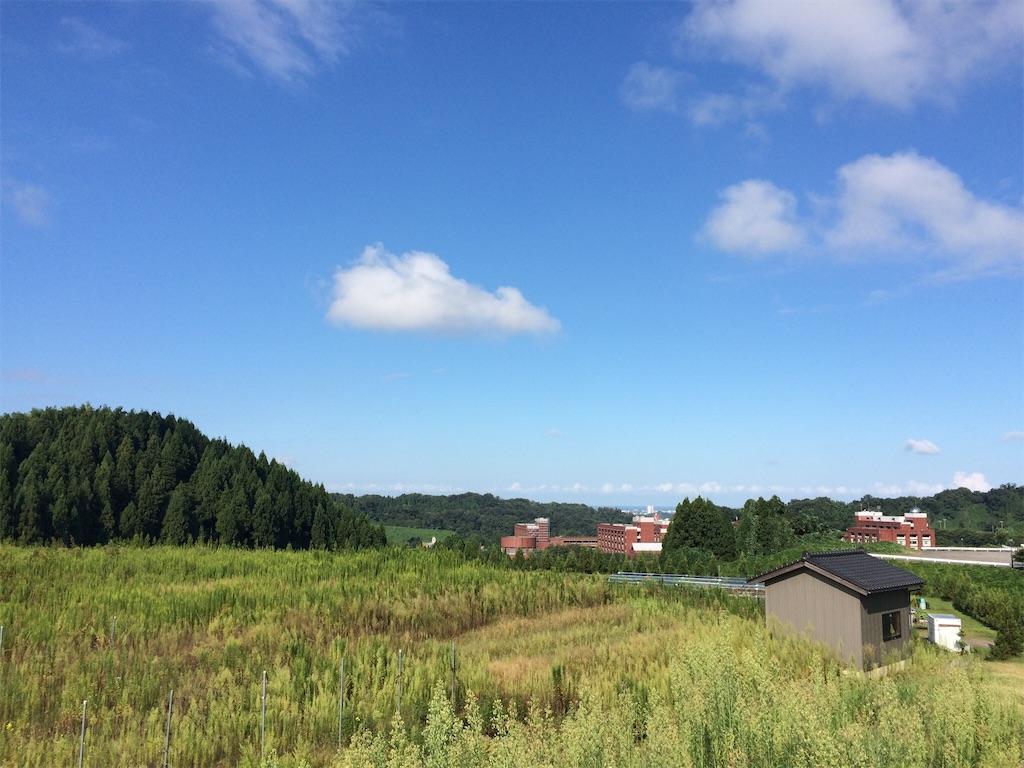 f:id:shirizoku:20190924033234j:image