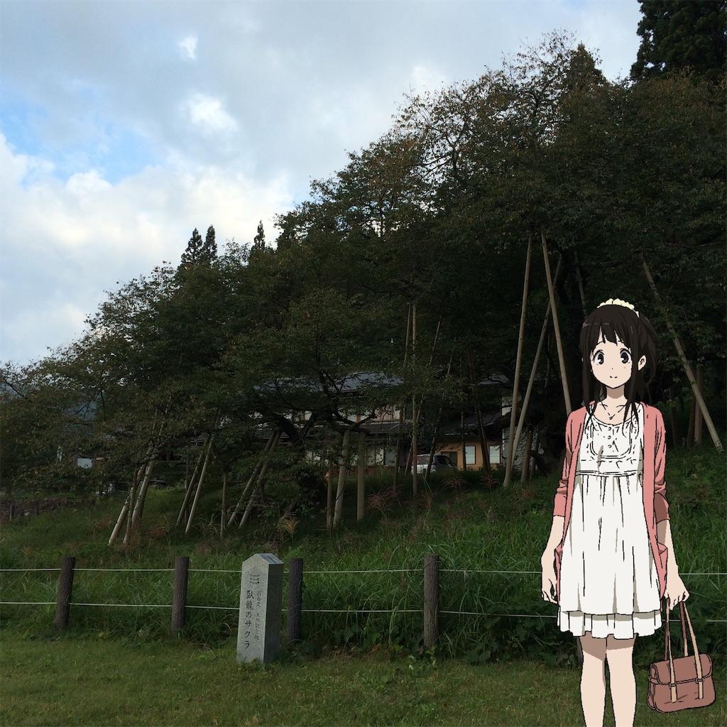 f:id:shirizoku:20190924041737j:image