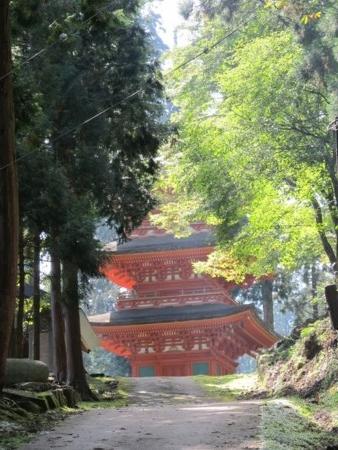 f:id:shiro-kurage:20111011204000j:image