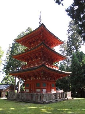 f:id:shiro-kurage:20111011204452j:image