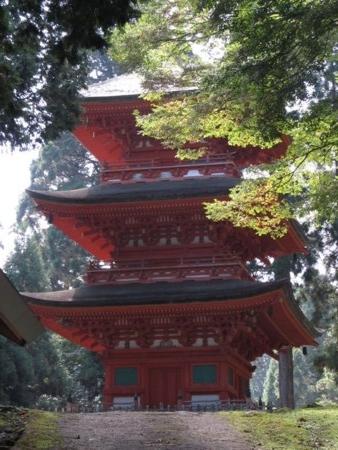 f:id:shiro-kurage:20111011204454j:image