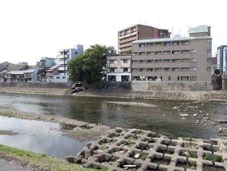 f:id:shiro-kurage:20121027220347j:image