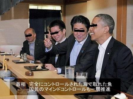 f:id:shiro-kurage:20140424130739j:image