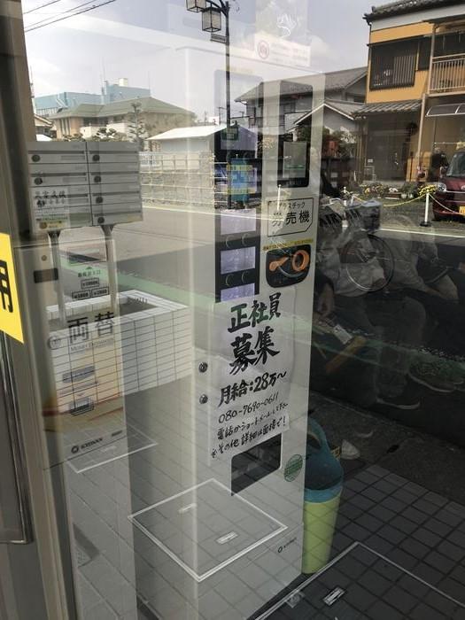 f:id:shiro-usagi:20190508221000j:plain