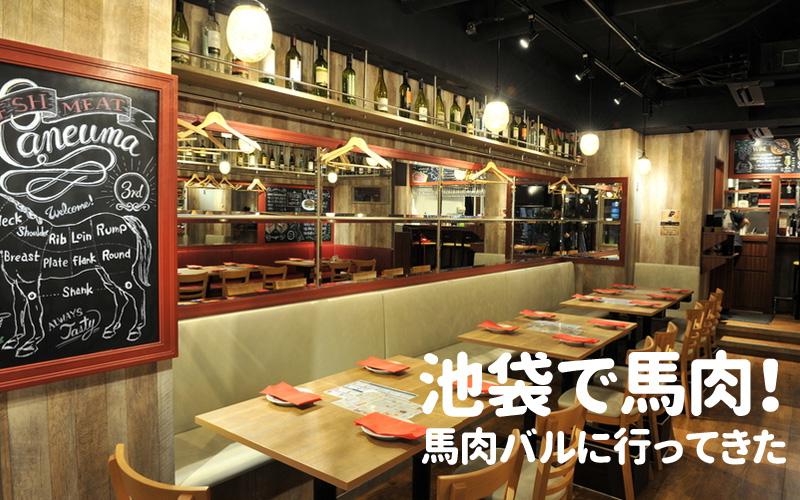 f:id:shiro-usagi:20190511223538j:plain