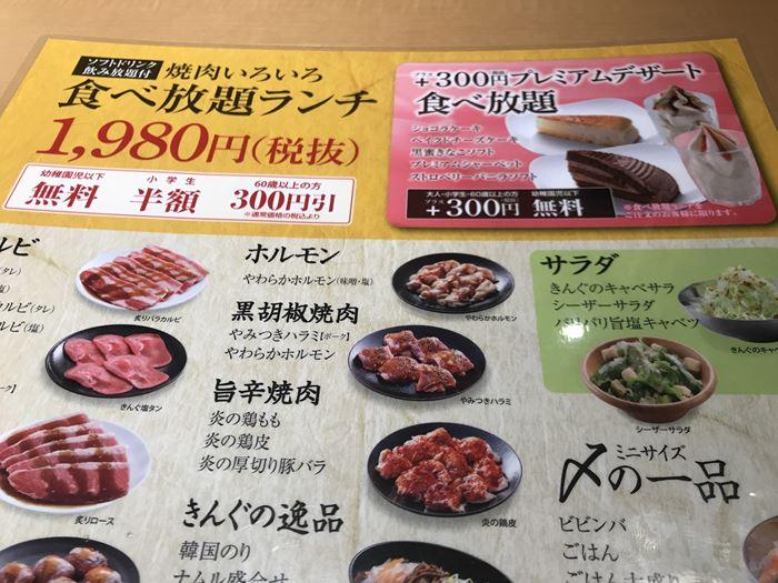 f:id:shiro-usagi:20190512022702j:plain