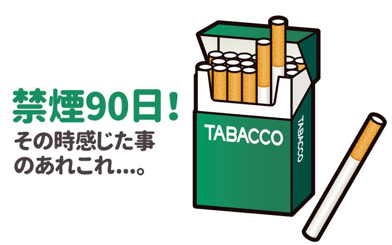 f:id:shiro-usagi:20190516201115j:plain