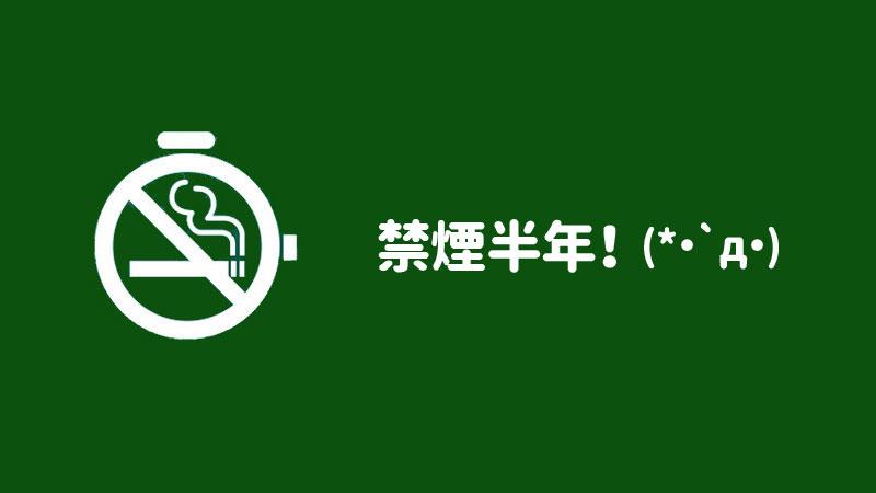 f:id:shiro-usagi:20190525201533j:plain